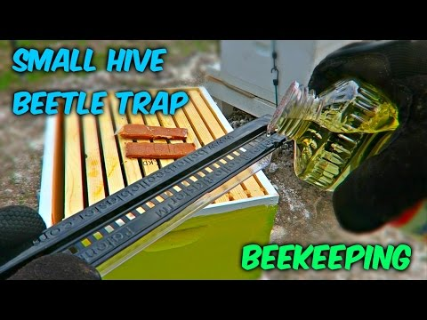 Easy Small Hive Beetle Trap - Beekeeping