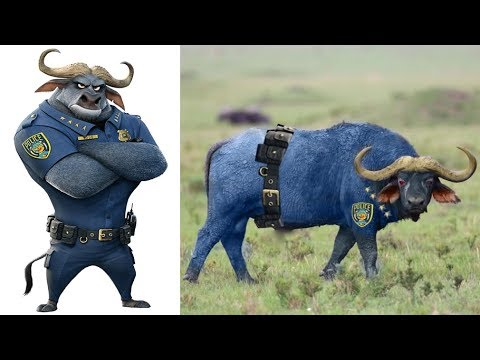 Zootopia Characters In Real Life