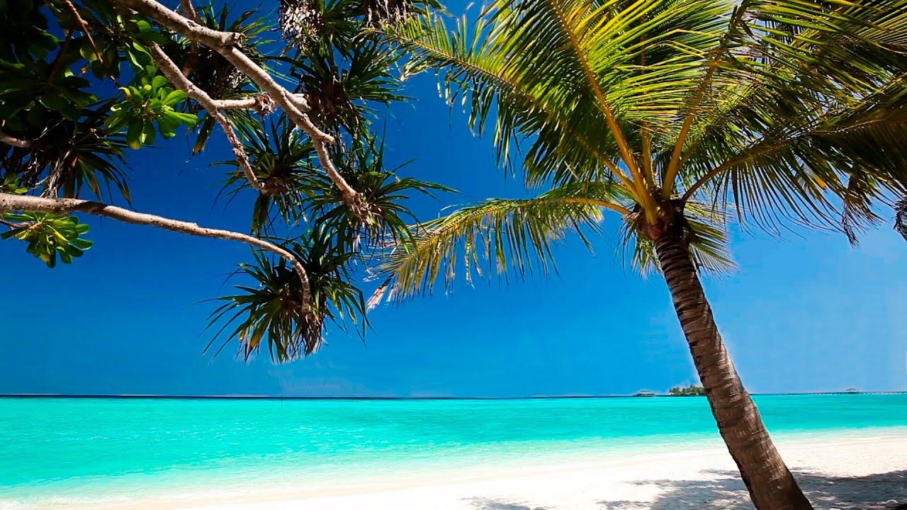 Tropical Island Beach Ambience Sound: Musique Pour Dormir