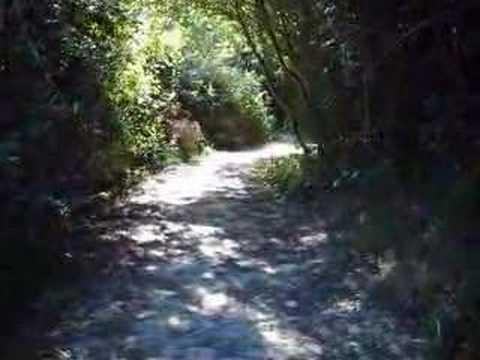 LE PORTEL PLAGE - Promenade au Parc de la falaise