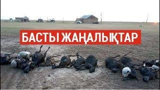 Басты жаңалықтар. 26.08.2019 күнгі шығарылым / Новости Казахстана