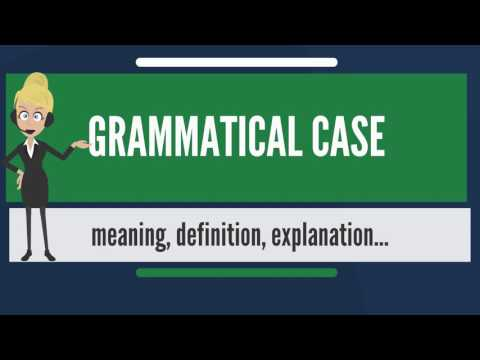 What is GRAMMATICAL CASE? What does GRAMMATICAL CASE mean? GRAMMATICAL CASE meaning & explanation
