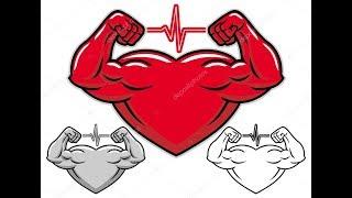 5 правил как укрепить сердце