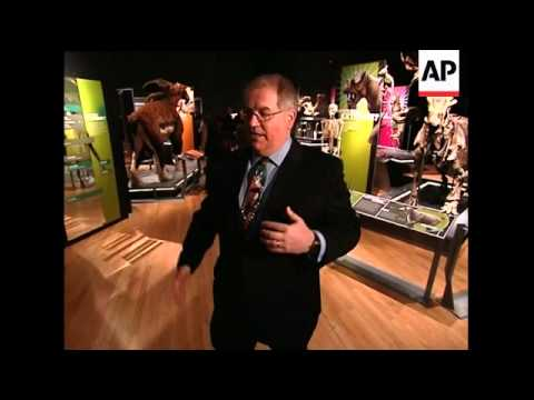 Extreme Mammals on show in New York