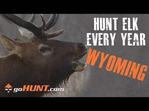 Hunt Elk Every Year: Wyoming And The GoHUNT INSIDER