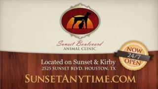 Sunset Animal Hospital - Emergency Houston Vet Clinic