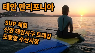 태안 만리포니아 여행 / SUP / 신안해안사구 / …