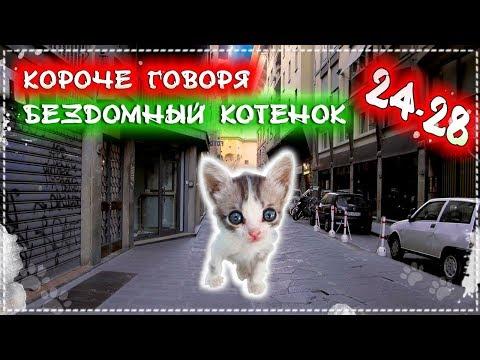 КОРОЧЕ ГОВОРЯ, Я БЕЗДОМНЫЙ КОТЕНОК 24-28 [От первого лица] История одной жизни. Бездомный щенок