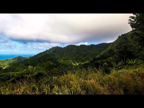 Sights Around Dominica