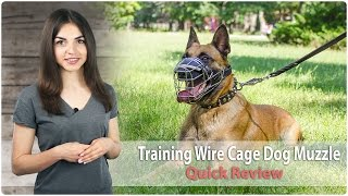 Revolutionary Design Wire Cage Dog Muzzle - Review
