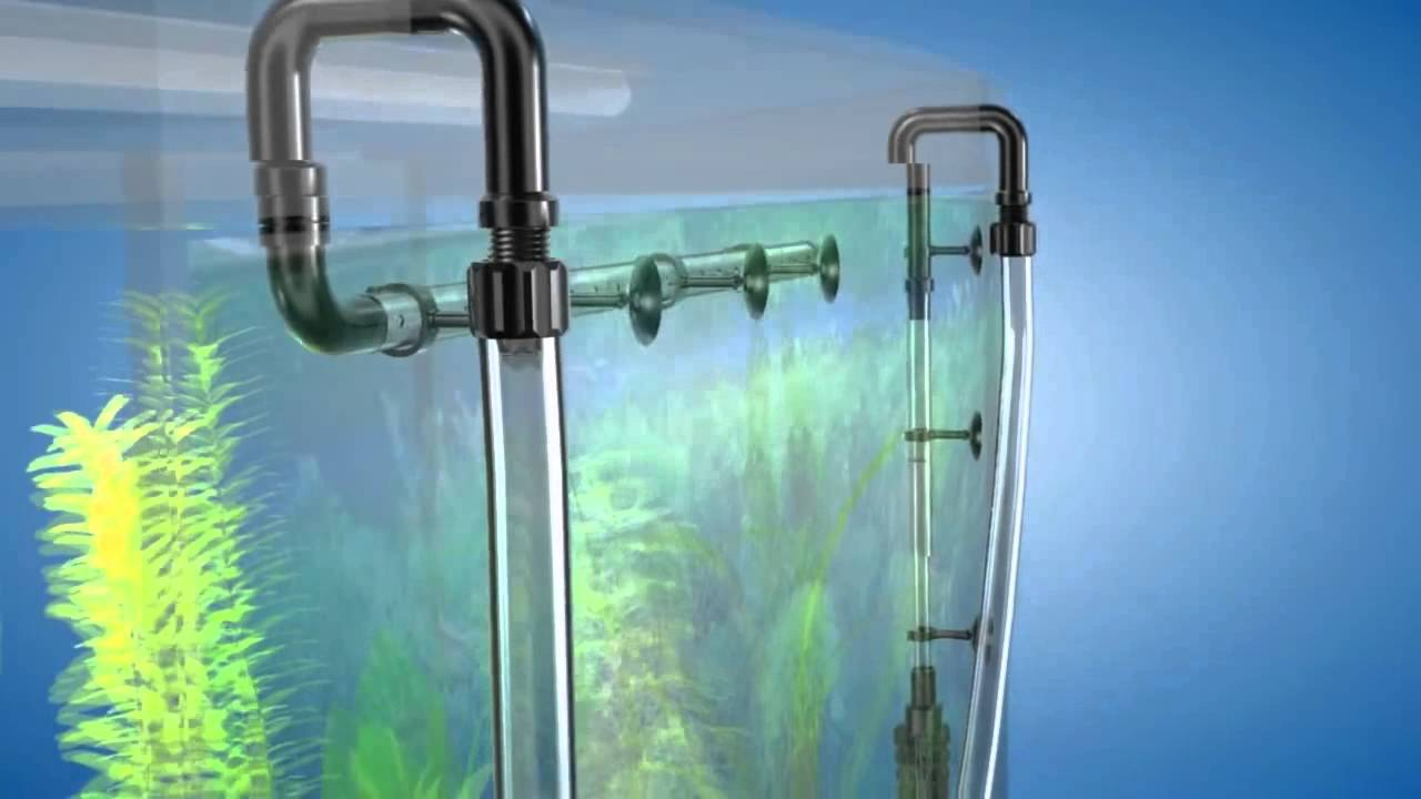 Внешний фильтр tetra ex 600 это кристально чистая, живая вода в вашем аквариуме. Предлагаем вам купить внешние фильтры tetra в нашем интернет-магазине.