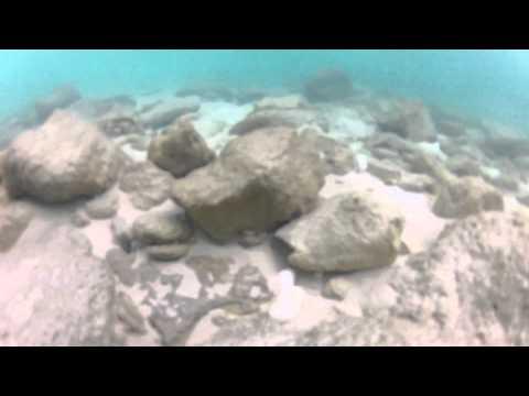 Férias em Bimini - Bahamas