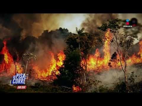 Pray for Amazonia: crónica de los incendios forestales en Brasil   De Pisa y Corre