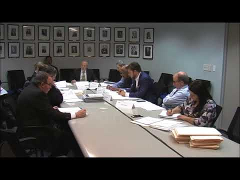 NYW Joint Audit Committee Meeting 10/19/17