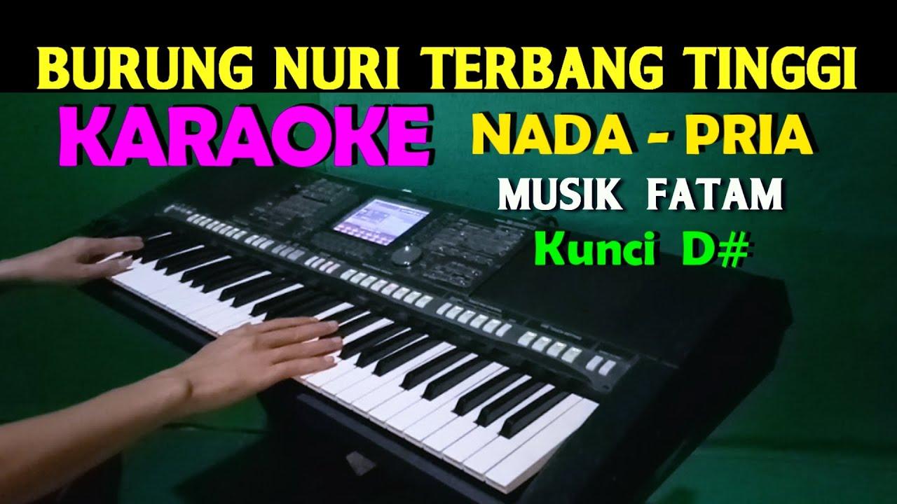 Burung Nuri Karaoke Nada Pria Es Do Lagu Lawas Youtube
