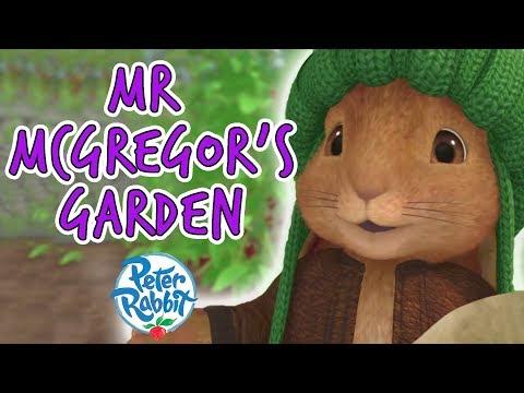 Peter Rabbit - Mr. McGregor's Garden Compilation | 40 minutes | Adventures with Peter Rabbit
