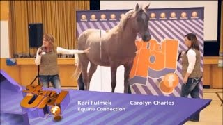 The FAMILY CHANNEL and Equine Connection