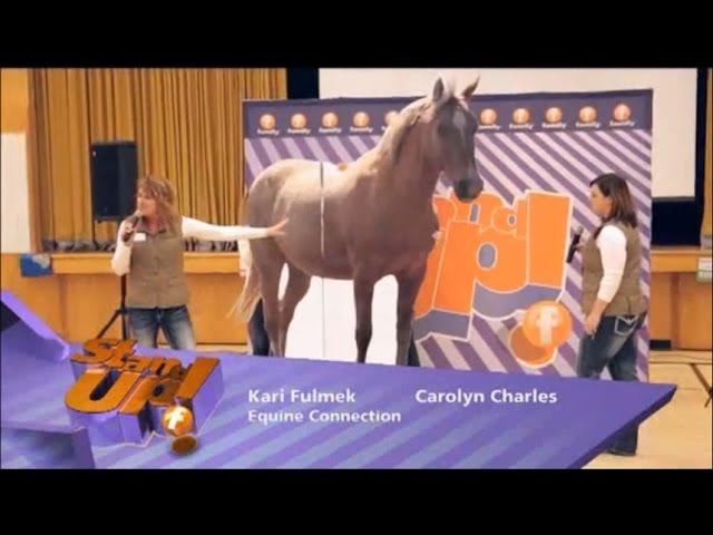 STAND UP! Family Channel and Equine Connection