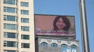[서폿후기] '프로듀스48' AKB48 타카하시 쥬리(高橋朱里) 생일 축하 영상.