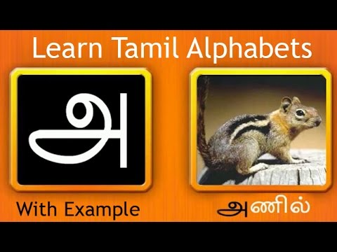 tamil alphabets with pictures pdf