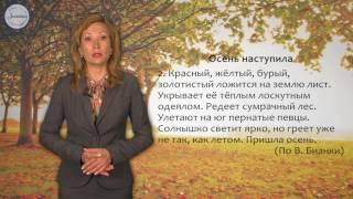 Русский язык 2 класс. Что такое текст