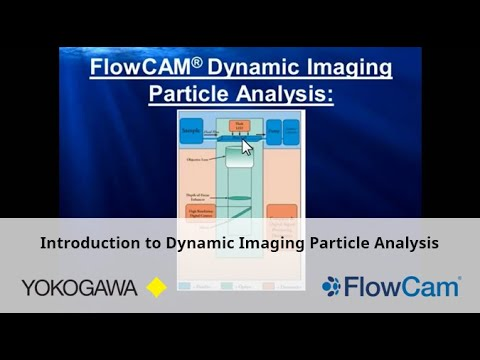 Introduction to Dynamic Imaging Particle Analysis