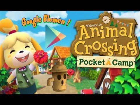 Animal Crossing Pocket Camp Blumen Kreuzen