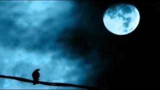 Amon Tobin & Kid Koala - Untitled