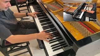 """Jean-Michel Pilc - Sonata in G# minor - 2nd Movement """"Steps"""""""