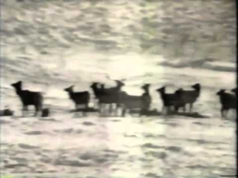 Classic Sesame Street films - Feeding Cows & Elk in Winter