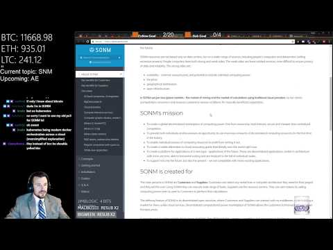 Crypto Fundamental Analysis - SONM (SNM)