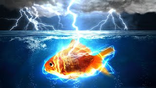 Why Doesn't Lightning Kill All The Fish?