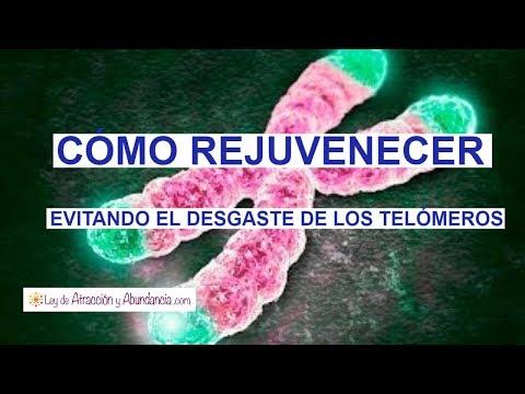 El Efecto Telómero Te Permite Rejuvenecer