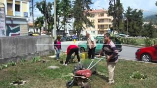 Guerrilla gardening 3