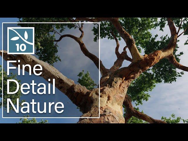 Lumion 10: Fine Detail Nature