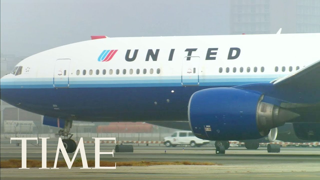 Dog Dies On United Airlines Flight After Being Forced To Fly In Overhead Bin