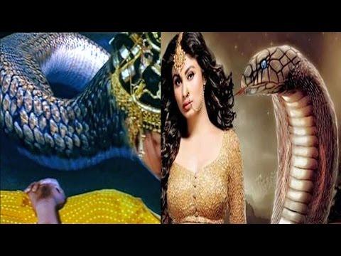 NAAGIN 2: LEAD शिवान्गी के असली नाग का पर्दाफाश,MASTER-MIND रूद्र की मौत…!   SHOCKING: Rudra To Die?
