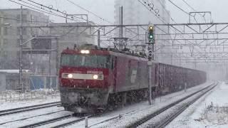 【JR貨物】大雪と貨物列車@辻堂・大船 2018.1.22