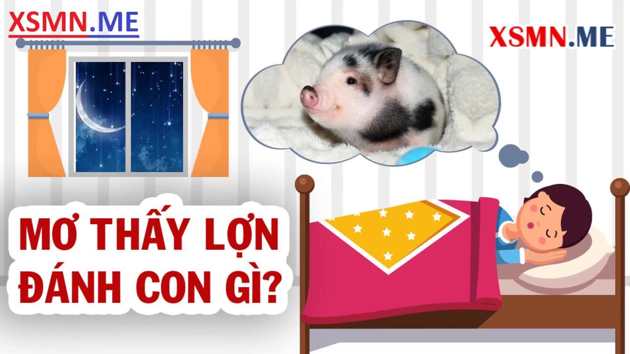 Mơ thấy lợn, heo đánh con gì? Giải mã giấc mơ thấy con lợn, con heo