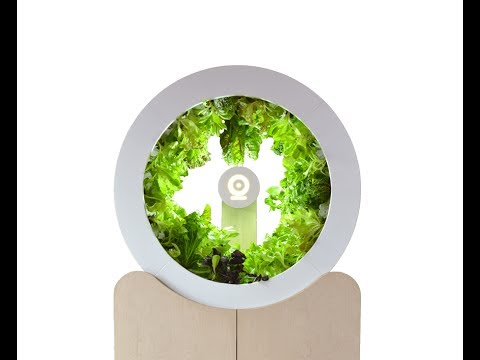 O Garden - This Invention Will Start Grow Your Organic Vegetables From Your Home