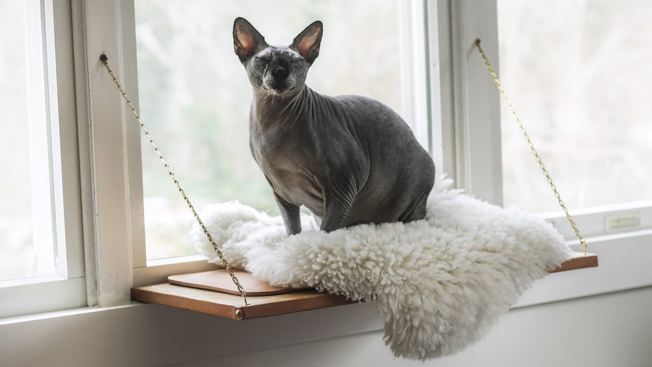 Building Martha Stewart S Cat Window Perch Youtube