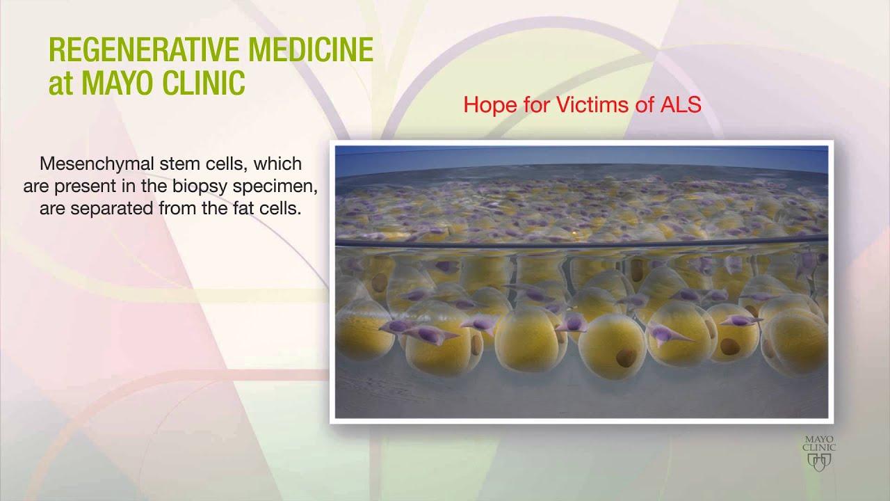 Regenerative Medicine at Mayo Clinic (Animation - No Sound)
