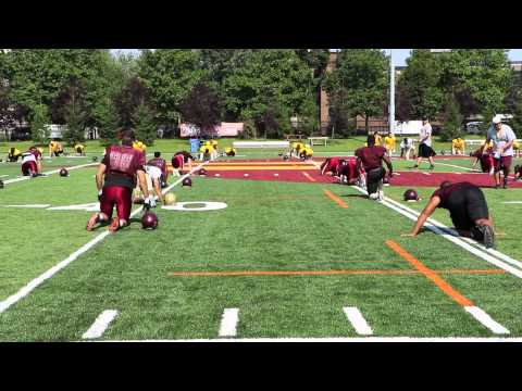 Concordia Stingers Football Preview