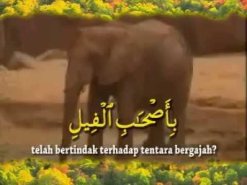 Suara Merdu! Anak Mengaji Al Quran Surah AL FIL - Muhammad Thaha Al Junayd