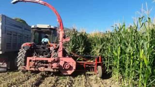 ÖZCEYLAN MAKİNA 3 sıra sıra bagımsız yandan gıden mısır silaj makinası