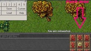 Tibia ElfBot NG Push MAX  icono Gratis
