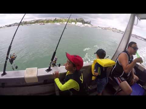 Phoenix Charters - Fishing Half Moon Bay - Auckland NZ - 2017 Feb 24th