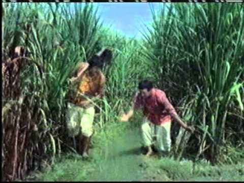 Song - Wah Re Jaadugar.....by Mohd.Rafi.