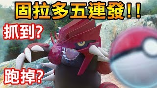 【Pokémon Go】固拉多五連發!!老禮包上架!!