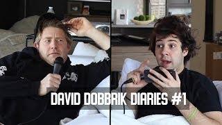 БИОГРАФИЯ ДЭВИДА ДОБРИКА // David Dobrik Diaries #1